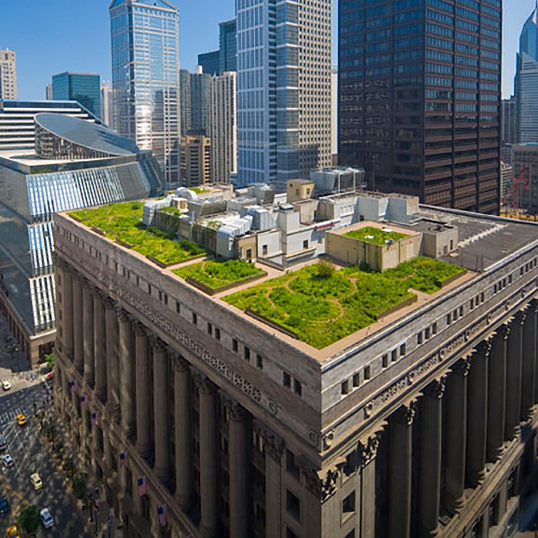 vegetated roofing 4.jpg