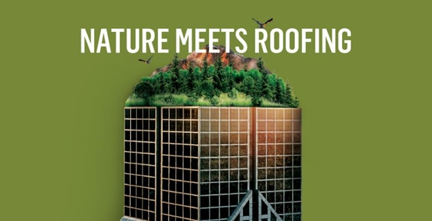 Blending in: Biomimicry in Building Construction