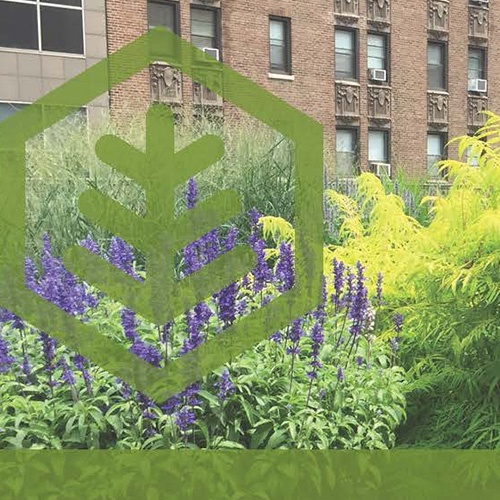 Understanding the benefits of vegetated roofing